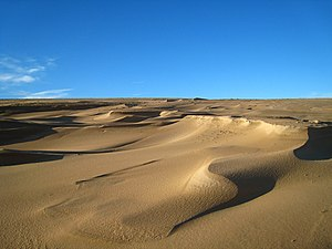 English: Newburgh: The Sands of Forvie The sur...