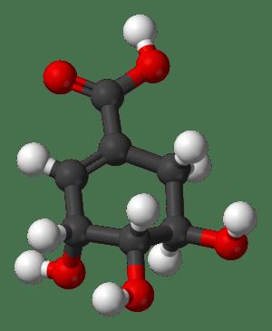 3D model of shikimic acid