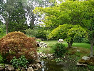 Water Garden at Blithewold Mansion, Gardens & Arboretum