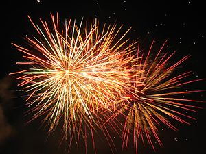 Picture of fireworks, taken by me on July 3, 2006.