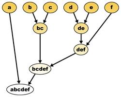 Los árboles filogenéticos tienen forma de dendrogramas. Cada nodo del dendrograma se corresponde con un clado.