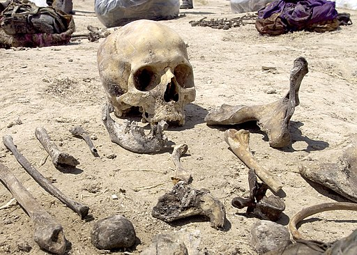 Iraqi mass grave