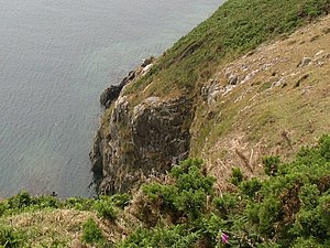 A steep clamber from the cliff edge