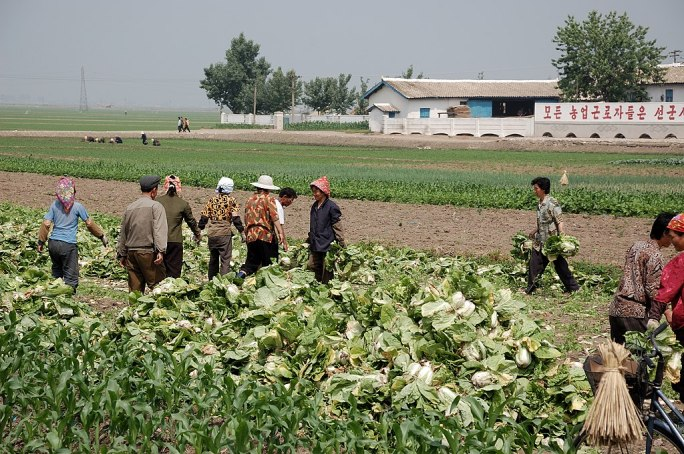 North Korea-Sariwon Migok Farm-01
