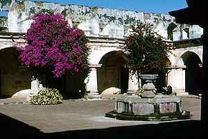 Convent, Antigua Guatemala R Villalobos March 2005