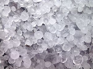English: Small hailstones approximately 1cm in...