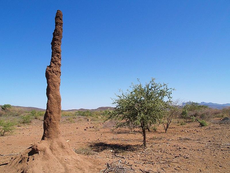 Datei:Termitenhuegel-kenia.jpg