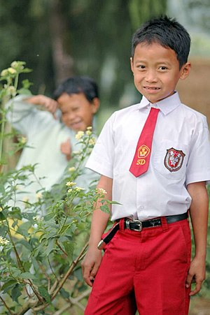 A young boy in Indonesia with the elementary s...