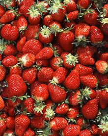 Chandler strawberries.jpg