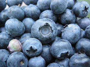 Blueberries.