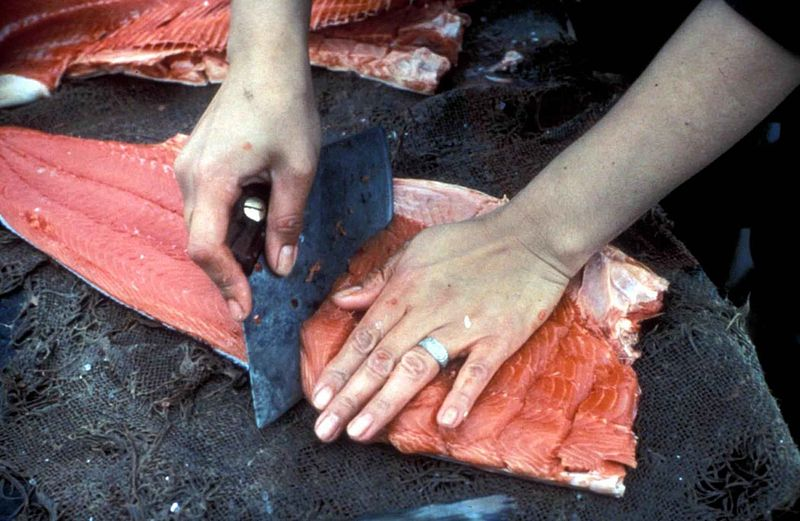 File:Processing salmon fish meat.jpg