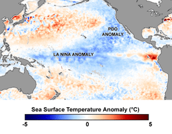 NASA image of the Pacific Ocean in April 2008 showing La Nina and Pacific Decadal Anomalies.