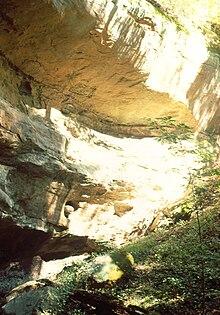 Rock Shelter Wikipedia