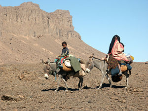 Picture of tuareg nomads in the south of Algeria.