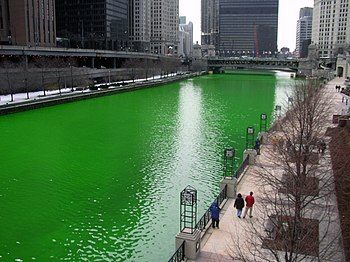 This is a photograph of the Chicago River dyed...