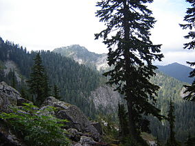 Join us for a winter watershed snowshoe tour at mt. Mount Seymour Provincial Park Wikipedia