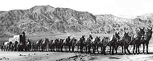 Twenty-mule team in Death Valley, California