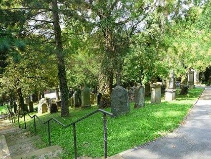 https://i1.wp.com/upload.wikimedia.org/wikipedia/commons/thumb/b/b7/Bergfriedhof_Heidelberg_Gr%C3%A4berfeld.JPG/512px-Bergfriedhof_Heidelberg_Gr%C3%A4berfeld.JPG?resize=427%2C321&ssl=1