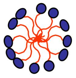 250px MicelleSchematic - Chất hoạt động bề mặt