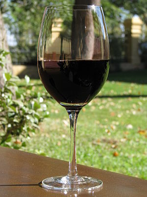 A glass of Malbec wine from Argentina
