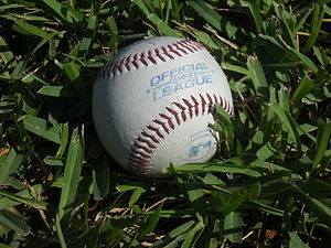 English: A baseball on grass.