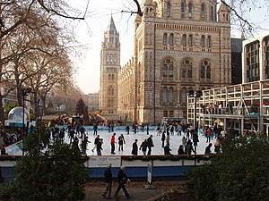 English: Busy ice rink at the Natural History ...