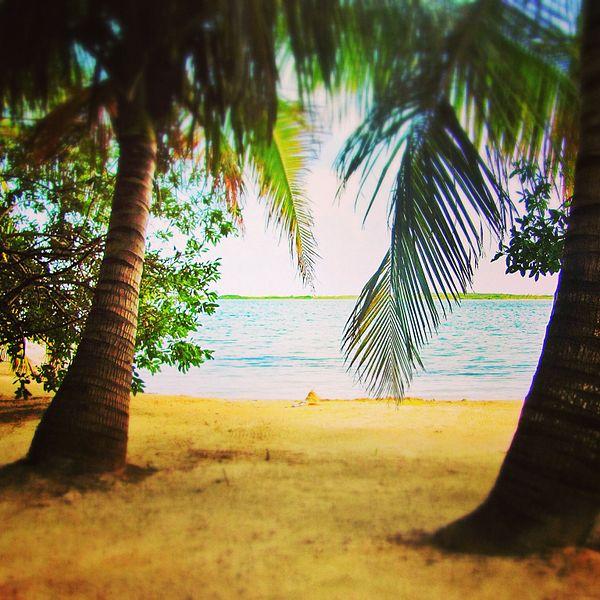 A private beach in a tax haven