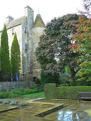 English: After the rain Trees in Falkland Pala...