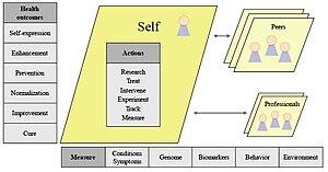 English: Copy of Figure 1 describing the healt...