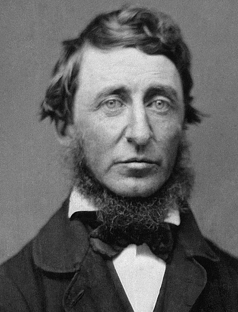 Archivo:Henry David Thoreau.jpg