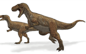 Megalosaurus ('Great Lizard', from Greek, μεγα...