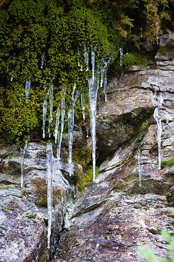 English: The icicles