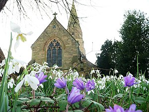 English: Lullington Church with spring flowers...