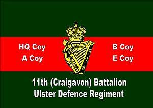 Image result for Craigavon union jack