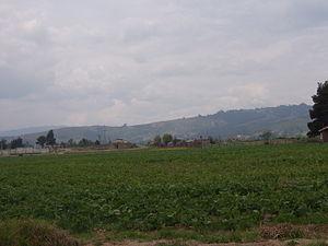 Agricultura nobsa