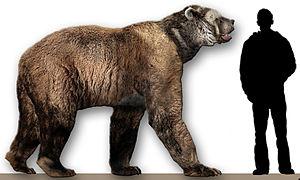 Arctodus simus reconstruction