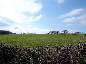 English: Green fields and blue skies. Fields n...