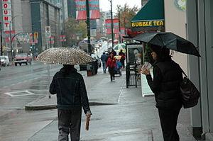 Rain Umbrella 01