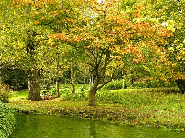 Il giardino di ninfa il giardino pi bello al mondo - Il giardino di ninfa ...