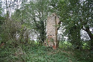 English: Ruined house at Swinthorpe The chimne...