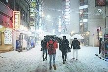 平成30年豪雪 - Wikipedia