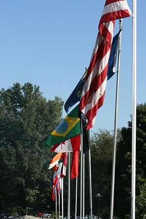 The flags of the different countries that ICC'...