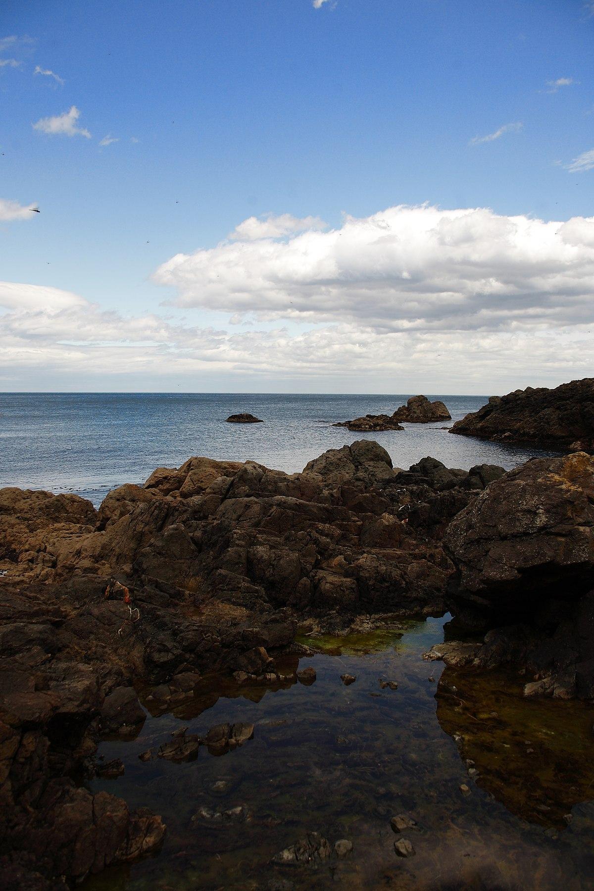 種差海岸 - Wikipedia