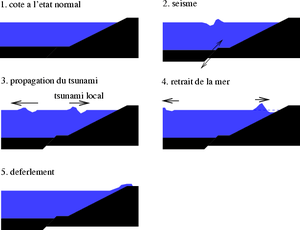 Cause-tsunami