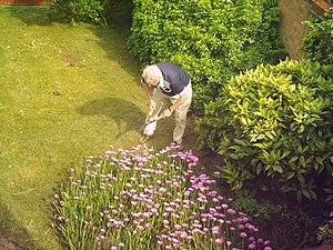 Gardener Gardening