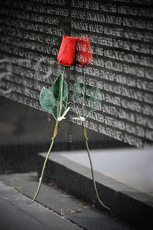 A red rose leans against the Vietnam Veterans ...