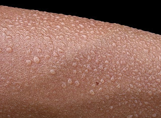 Sweating is the main cooling system in the modern human body