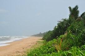 Sri Lanka, Bentota, beach (2)