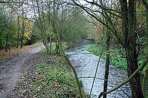 Ver River - Riverside walk Nr Drop Lane Over t...
