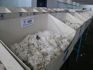 Merino wool samples that were sold by auction,...